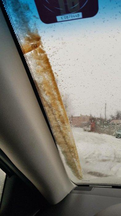 В Николаеве выпал желтый снег