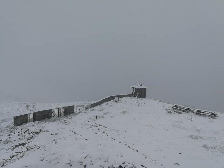 На Закарпатье выпал летний снег. ФОТО  Подробнее читайте на Юж-Ньюз: http://xn----ktbex9eie.com.ua/archives/11636