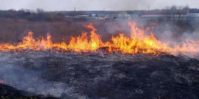 В Украине чрезвычайная пожарная опасность Подробнее читайте на Юж-Ньюз: http://xn----ktbex9eie.com.ua/archives/11279