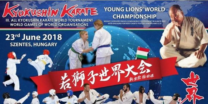 Юный николаевец стал чемпионом мира по киокушин каратэ Подробнее читайте на Юж-Ньюз: http://xn----ktbex9eie.com.ua/archives/12407