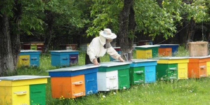 ПРО ДЕРЖАВНУ РЕЄСТРАЦІЮ ПАСІК Подробнее читайте на Юж-Ньюз: http://xn----ktbex9eie.com.ua/archives/9212