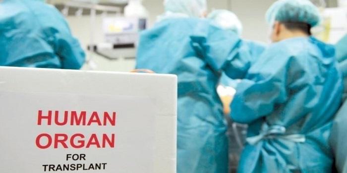 Порошенко подписал закон о трансплантации Подробнее читайте на Юж-Ньюз: http://xn----ktbex9eie.com.ua/archives/11261