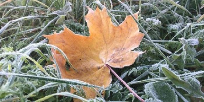 Смерчи и ранняя зима: синоптик прогнозирует аномальную погоду до конца года Подробнее читайте на Юж-Ньюз: http://xn----ktbex9eie.com.ua/archives/14336