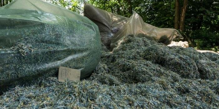 Под Днепром, в лесопосадке, нашли мешки с миллионами гривен Подробнее читайте на Юж-Ньюз: http://xn----ktbex9eie.com.ua/archives/13630
