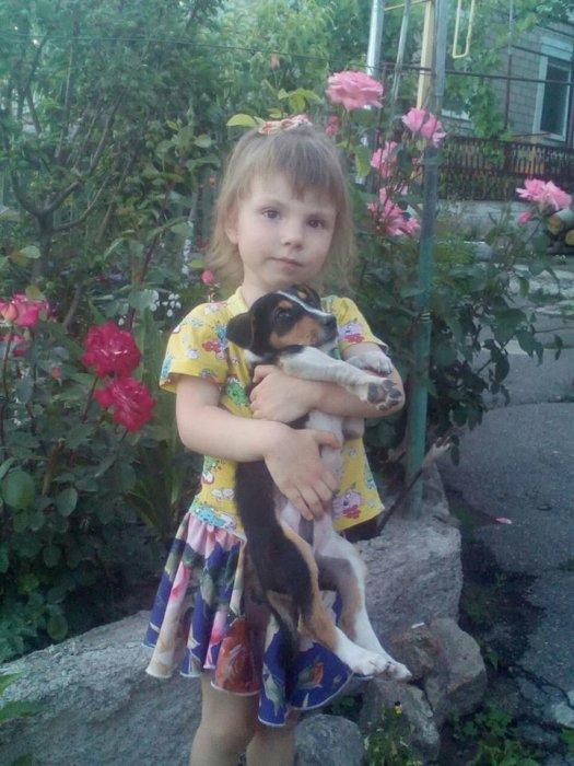 В Николаеве маленькой девочке срочно нужна редкая группа крови — ищут донора  Подробнее читайте на Юж-Ньюз: http://xn----ktbex9eie.com.ua/archives/12662