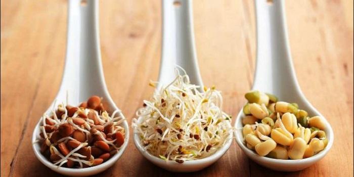 Чем ценны для здоровья пророщенные зерна Подробнее читайте на Юж-Ньюз: http://xn----ktbex9eie.com.ua/archives/14153