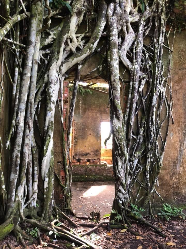 Опасная экспедиция в джунгли Амазонии: Зачем журналист из Украины пошел по следам нацистов (фото)  Подробнее читайте на Юж-Ньюз: http://xn----ktbex9eie.com.ua/archives/15073