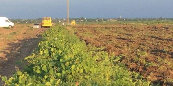 Скандальные подробности пожара на виноградниках под Одессой Подробнее читайте на Юж-Ньюз: http://xn----ktbex9eie.com.ua/archives/19958