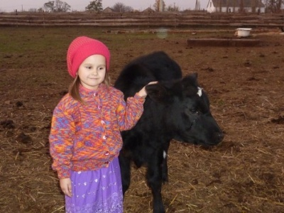 Рай для коров: в приюте под Николаевом спасли жизни более чем 600 животным  Подробнее читайте на Юж-Ньюз: http://xn----ktbex9eie.com.ua/archives/18024