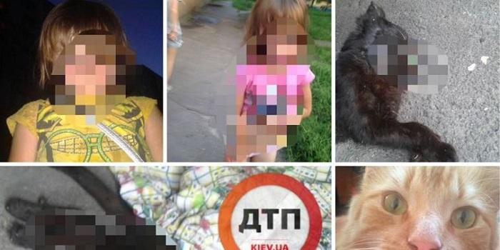 Сети шокировала история о киевской девочке-живодерке и ее пьющей матери Подробнее читайте на Юж-Ньюз: http://xn----ktbex9eie.com.ua/archives/16747