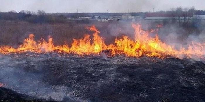 По всей территории Украины объявлен максимальный уровень пожароопасности Подробнее читайте на Юж-Ньюз: http://xn----ktbex9eie.com.ua/archives/17624