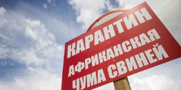 Фермери — НЕ ВПУСТИ АФРИКАНСЬКУ ЧУМУ СВИНЕЙ У СВІЙ ДВІР! Треба знати. Подробнее читайте на Юж-Ньюз: http://xn----ktbex9eie.com.ua/archives/20545