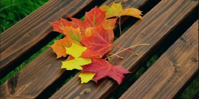 Начинается осень: синоптики дали прогноз по похолоданию в Украине Подробнее читайте на Юж-Ньюз: http://xn----ktbex9eie.com.ua/archives/22063