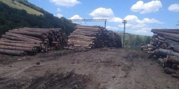 Рада разрешила вывозить лес-кругляк Подробнее читайте на Юж-Ньюз: http://xn----ktbex9eie.com.ua/archives/21022