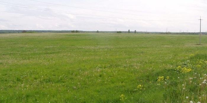 В Николаевской области на поле случайно обнаружили мумию Подробнее читайте на Юж-Ньюз: http://xn----ktbex9eie.com.ua/archives/31169