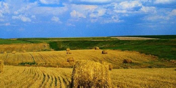 Какой сегодня праздник? ДЕНЬ РАБОТНИКА СЕЛЬСКОГО ХОЗЯЙСТВА Подробнее читайте на Юж-Ньюз: http://xn----ktbex9eie.com.ua/archives/29792
