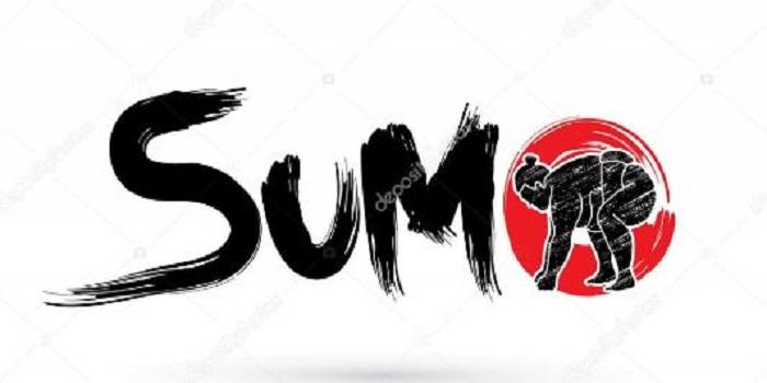 Южноукраїнські спортсмени взяли участь в розіграші Молодіжного Кубка Европпи з сумо Подробнее читайте на Юж-Ньюз: http://xn----ktbex9eie.com.ua/archives/32740
