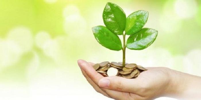 В Николаеве ГФС рассказала об особенностях уплаты и декларирования экологического налога Подробнее читайте на Юж-Ньюз: http://xn----ktbex9eie.com.ua/archives/38813
