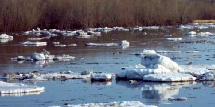 Смерть на льдине: стали известны страшные подробности последнего дня ребенка. Видео. Подробнее читайте на Юж-Ньюз: http://xn----ktbex9eie.com.ua/archives/39255