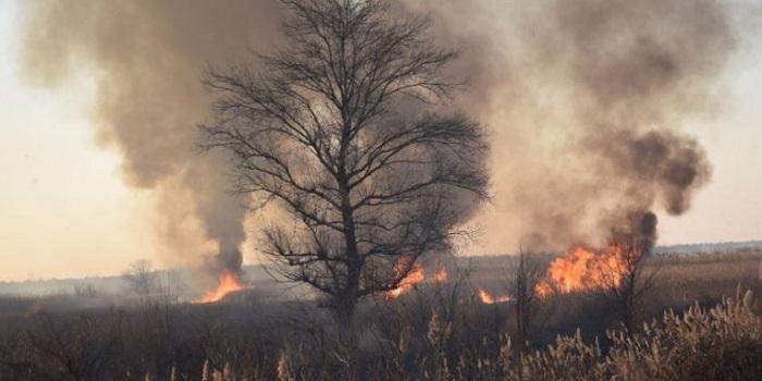 На Южном Буге браконьеры подожгли камыш — пожар растянулся на много километров. Видео. Подробнее читайте на Юж-Ньюз: http://xn----ktbex9eie.com.ua/archives/41099