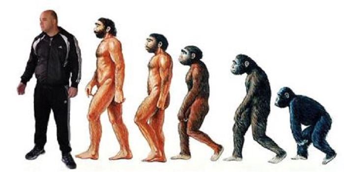 Эволюция дармоеда: из рэкетира в шантажисты Подробнее читайте на Юж-Ньюз: http://xn----ktbex9eie.com.ua/archives/45842