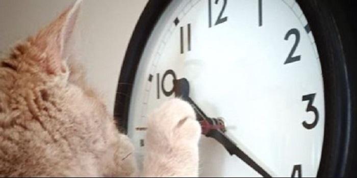 Украина перейдет на летнее время: когда переводить часы в 2019 году. Видео. Подробнее читайте на Юж-Ньюз: http://xn----ktbex9eie.com.ua/archives/44421