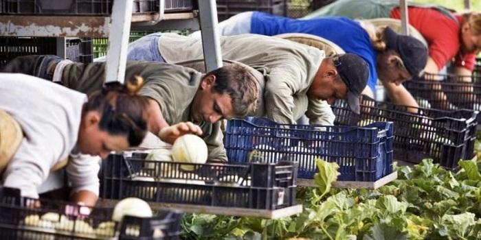 Отъезд украинцев на работу за границу — это не катастрофа, — Климкин Подробнее читайте на Юж-Ньюз: http://xn----ktbex9eie.com.ua/archives/44549