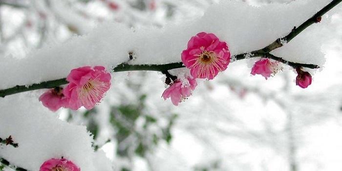 В Украину идет атмосферный фронт с морозами и проливными дождями Подробнее читайте на Юж-Ньюз: http://xn----ktbex9eie.com.ua/archives/43518