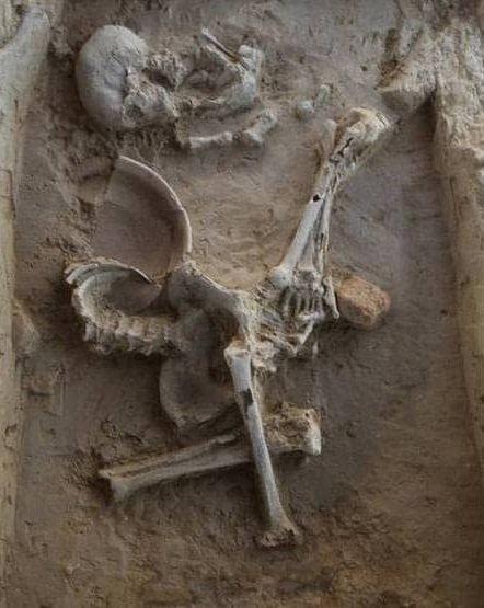 В Индии раскопали саркофаги древней цивилизации, где лежали женщины с оружием  Подробнее читайте на Юж-Ньюз: http://xn----ktbex9eie.com.ua/archives/50526