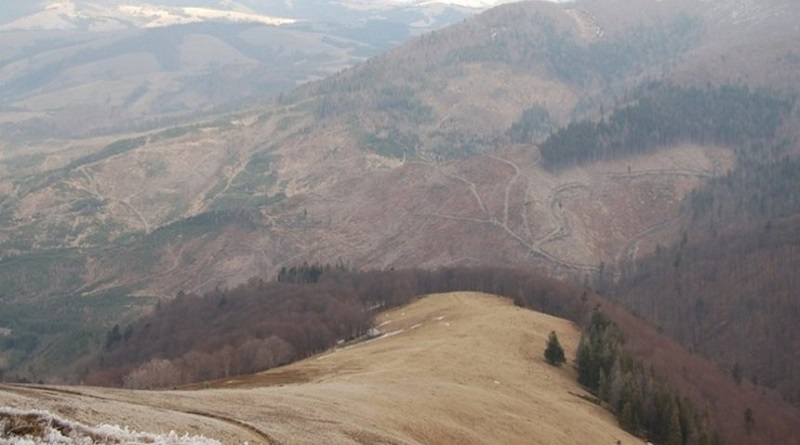 Рада запретила вырубку лесов на горных склонах Карпат Подробнее читайте на Юж-Ньюз: http://xn----ktbex9eie.com.ua/archives/65865