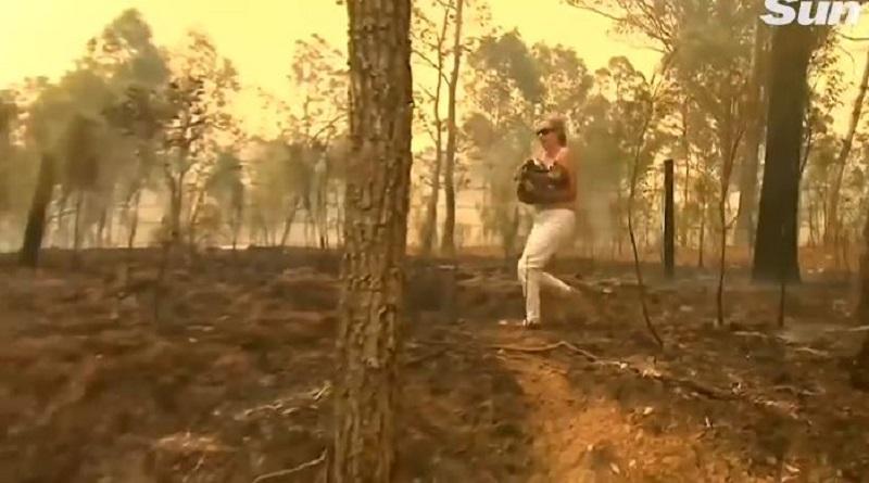В Австралии женщина спасла коалу из лесного пожара. Подробнее читайте на Юж-Ньюз: http://xn----ktbex9eie.com.ua/archives/67527