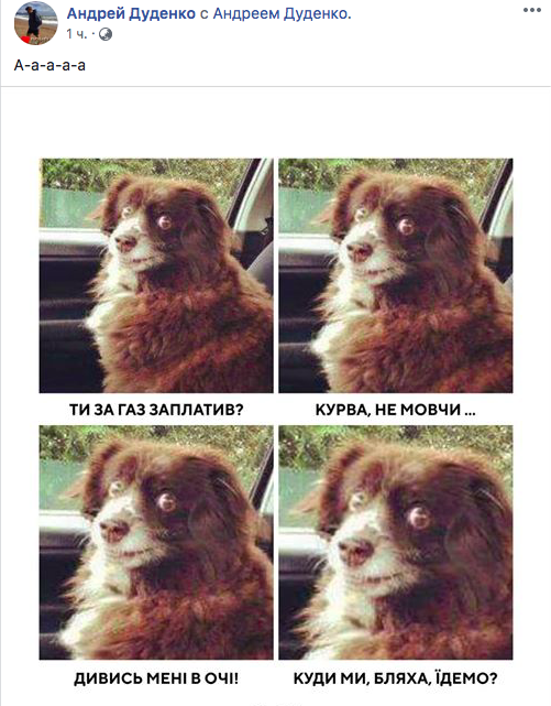 «А пенсии платить борзыми щенками». Сеть обсуждает совет «cлуги народа» пенсионерке продать собаку, чтоб оплатить коммуналку  Подробнее читайте на Юж-Ньюз: http://xn----ktbex9eie.com.ua/archives/72384
