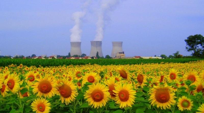Заборонити закриття АЕС, або зменшення їхніх потужностей, оскільки це найбезпечніше і найдешевше джерело енергії. Петиція на сайті президента Подробнее читайте на Юж-Ньюз: http://xn----ktbex9eie.com.ua/archives/80180/%D0%B7%D0%B0%D0%B1%D0%BE%D1%80%D0%BE%D0%BD%D0%B8%D1%82%D0%B8-%D0%B7%D0%B0%D0%BA%D1%80%D0%B8%D1%82%D1%82%D1%8F-%D0%B0%D0%B5%D1%81-%D0%B0%D0%B1%D0%BE-%D0%B7%D0%BC%D0%B5%D0%BD%D1%88%D0%B5%D0%BD%D0%BD