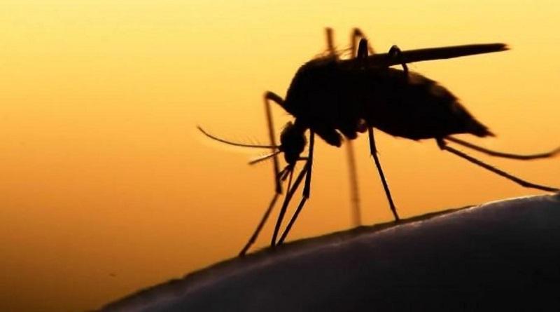 Бабушкин рецепт: защита кожи от укусов комаров Подробнее читайте на Юж-Ньюз: http://xn----ktbex9eie.com.ua/archives/80260/%D0%B1%D0%B0%D0%B1%D1%83%D1%88%D0%BA%D0%B8%D0%BD-%D1%80%D0%B5%D1%86%D0%B5%D0%BF%D1%82-%D0%B7%D0%B0%D1%89%D0%B8%D1%82%D0%B0-%D0%BA%D0%BE%D0%B6%D0%B8-%D0%BE%D1%82-%D1%83%D0%BA%D1%83%D1%81%D0%BE%D0%B2