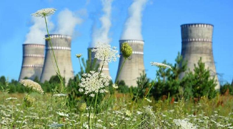Энергоатом закончил полугодие с чистым убытком в 2,6 млрд грн