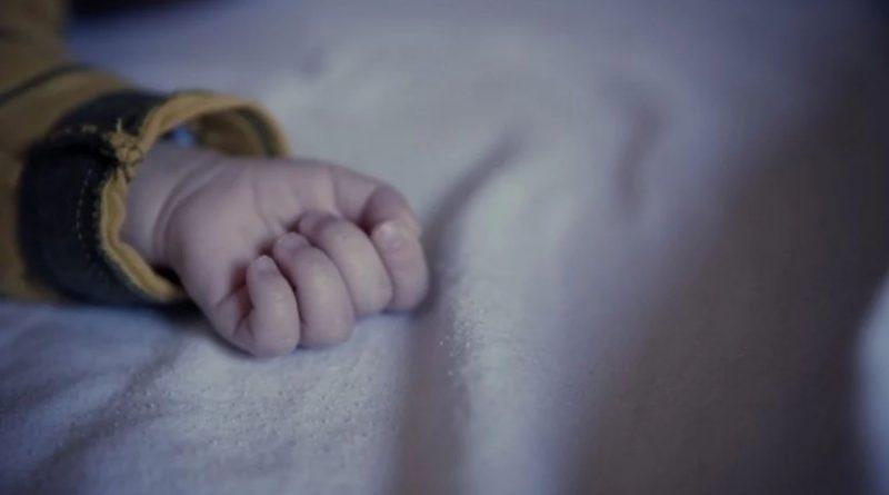 В Днепре собака откусила 2-хлетнему ребенку гениталии
