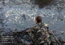 Из-за прорыва плотины на Южном Буге массово погибла краснокнижная рыба