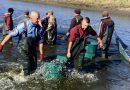 Річку Південний Буг поповнили 6,6 тоннами риби