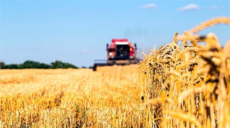 Президент Владимир Зеленский одобрил создание Аграрного реестра в Украине