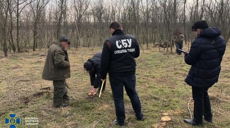 СБУ задержала чиновников Вознесенского лесхоза, которые вырубили ценные деревья на продажу