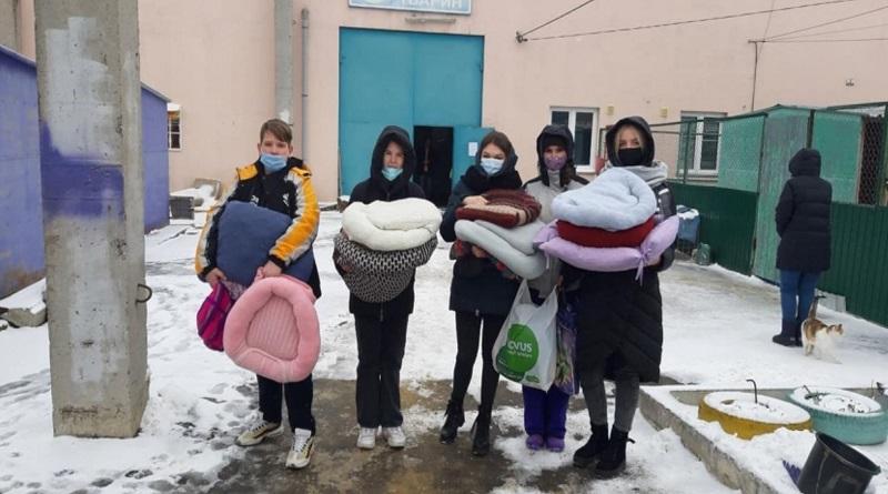 В Николаеве школьники пошили лежанки для постояльцев «Центра защиты животных»
