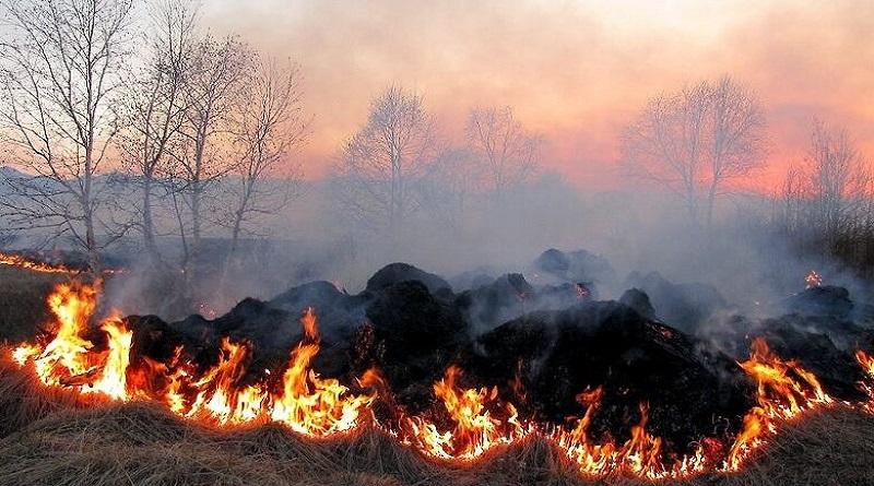 В ГСЧС предупредили о чрезвычайном уровне пожарной опасности в Николаевской области 4 мая