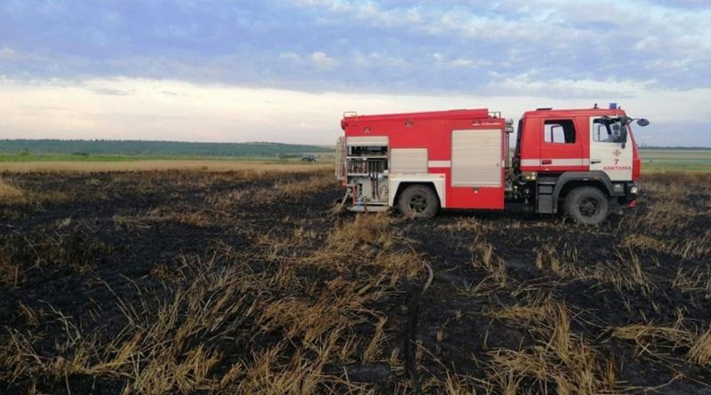 В Николаевской области неизвестные на мопеде подожгли поле ячменя (ВИДЕО)