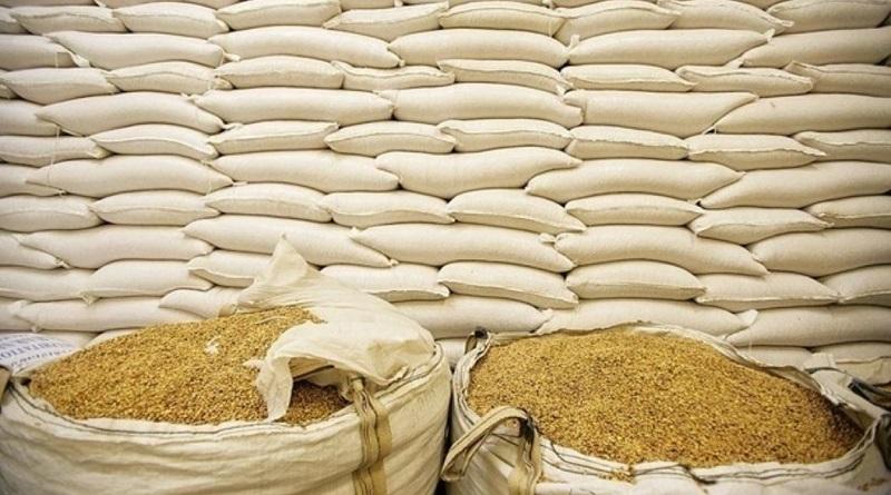 В Украине ожидают обильный урожай ранних зерновых
