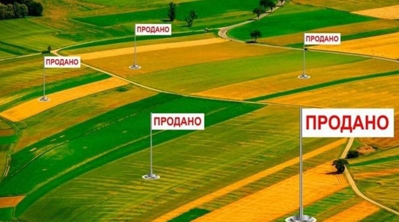 Рынок земли: как продать участок – алгоритм для продавца