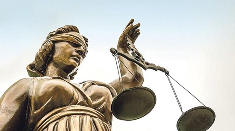 Осужден житель Первомайска за порубку деревьев – нарушитель заплатит более ₴30 тысяч