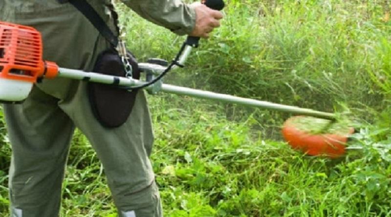 В Энергодаре газонокосильщика обстреляли из-за шума