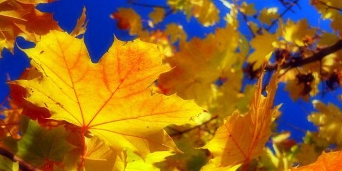 Укргидрометцентр объявил, когда в Украину вернется долгожданное тепло Подробнее читайте на Юж-Ньюз: http://xn----ktbex9eie.com.ua/archives/62514