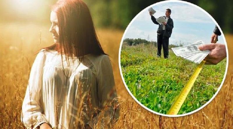 Каждый украинец может бесплатно получить землю: как это сделать Подробнее читайте на Юж-Ньюз: http://xn----ktbex9eie.com.ua/archives/66610