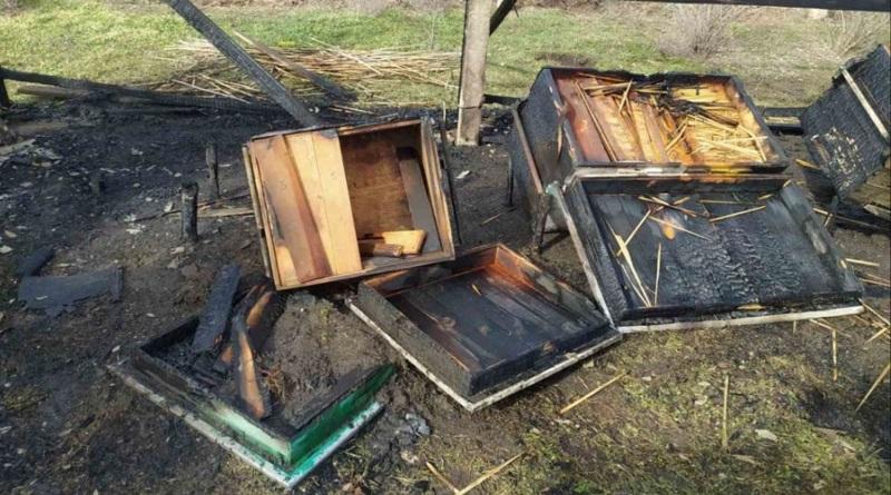 В пгт Александровка подожгли пасеку